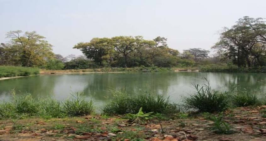Madhesh Terai Tour