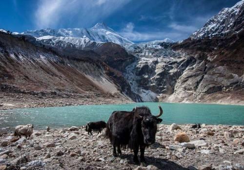 Kaltal and Birendratal Manaslu Region Trek