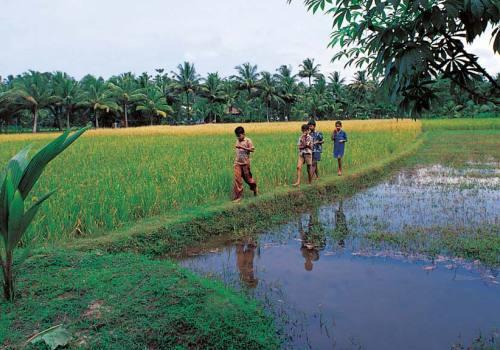 Rural India Tour